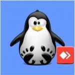 نصب انی دسک بر روی لینوکس ubuntu و fedora