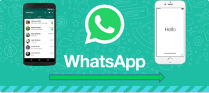 Whatsapp-Transfer-DigiDoki